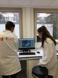 Préparation de solutions pour mesures au spectrophotomètre
